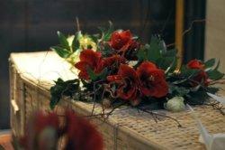 Bloemen uit het seizoen: winter
