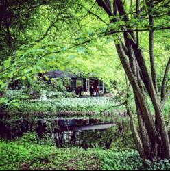 Uitvaart in Het Amsterdamse Bos